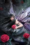 ANNE STOKES- ROSE FAIRY POSTCARD